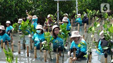 Karyawan melakukan gerakan tanam mangrove dalam rangka World Clean Up day di Jakarta. Memperingati Hari Bumi mengusung tema Restore Our Earth berfokus pada proses alam, perkembangan teknologi ramah lingkungan dan pemikiran inovatif yang dapat memulihkan ekosistem dunia. (Liputan6.com/Pool/Allianz)