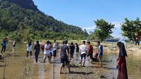 Anak-anak muda Minang menanam mangrove di Sungai Pinang Kabupaten Pesisir Selatan Sumatera Barat. (Liputan6.com/ Novia Harlina)