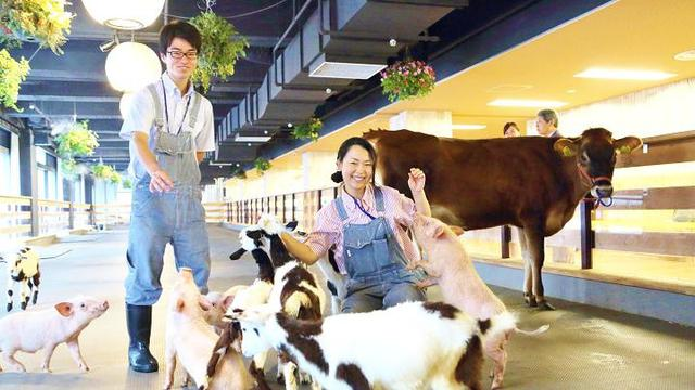 Pasona Inc, Kantor di Jepang Ini Memiliki Fasilitas Peternakan di Dalamnya