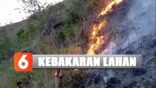 Lahan 55 hektare di wilayah Pegunungan Lawakan, Sulawesi Selatan, terbakar.