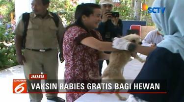 Pemprov DKI Jakarta memberikan vaksin gratis bagi hewan penular rabies. Kegiatan tersebut digelar serentak di lima kota wilayah ibu kota, termasuk Jakarta Utara.