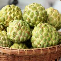 ilustrasi buah srikaya/copyright by chuchiko17 (Shutterstock)