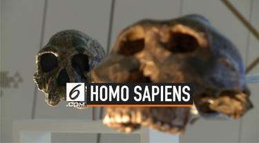 Para peneliti temukan sampel paling awal dari spesies homo sapiens di Yunani. Penemuan tersebut berupa tengkorak berusia 210.000 tahun.