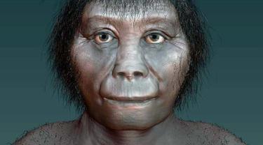 Homo floriensis