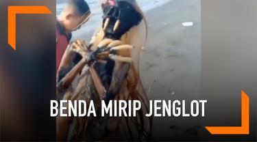 Baru-baru ini, warga dihebohkan dengan penemuan bendar yang mirip jenglot di sekitar Pantai Gilimanuk, Bali.
