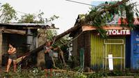 Sebuah pohon tumbang dihantam ngin kencang dari Topan Mangkhut di kota Tuguegarao di provinsi Cagayan, Filipina timur laut (15/9). Pemerintah Filipina mengeluarkan perintah evakuasi untuk 5,2 juta warganya akibat topan Mangkhut. (AP Photo/Aaron Favila)