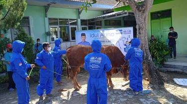 Hewan Kurban dari Politikus Demokrat Edhie Baskoro Yudhoyono atau Ibas.