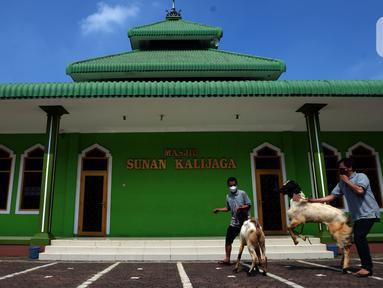 Panitia membawa hewan kurban yang akan disembelih di Masjid Sunan Kalijaga, Padepokan Taman Mini Indonesia Indah, Jakarta, Selasa (20/7/2021). Pemotongan hewan kurban dilakukan dengan menerapkan protokol kesehatan ketat menyusul pemberlakuan PPKM Darurat. (merdeka.com/Imam Buhori)