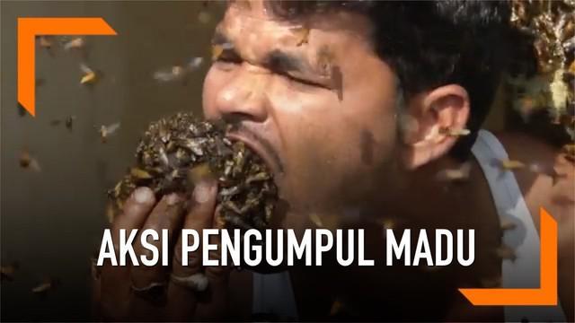 Seorang pengumpul madu asal India melakukan aksi menegangkan. Ia memasukkan lebah ke mulutnya.