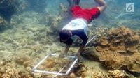 Siswa melakukan pengamatan kondisi terumbu karang pada program Sekolah Pantai Indonesia (SPI) di Pulau Tidung Kecil, Kepulauan Seribu, Jakarta (22/11). Kegiatan Gerakan Cinta Laut oleh KKP menerapkan prinsip dari, oleh dan untuk siswa. (Liputan6.com/KKP)