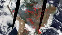 Kebakaran hutan Amazon tertangkap kamera satelit NASA dari antariksa. (NASA)