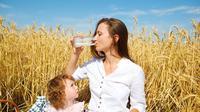 Nutrisi Penting untuk Ibu Menyusui