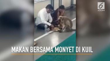 Kebiasaan unik para jemaah di sebuah kuil di India, mereka makan bersama monyet liar yang tinggal di sekitar kuil.