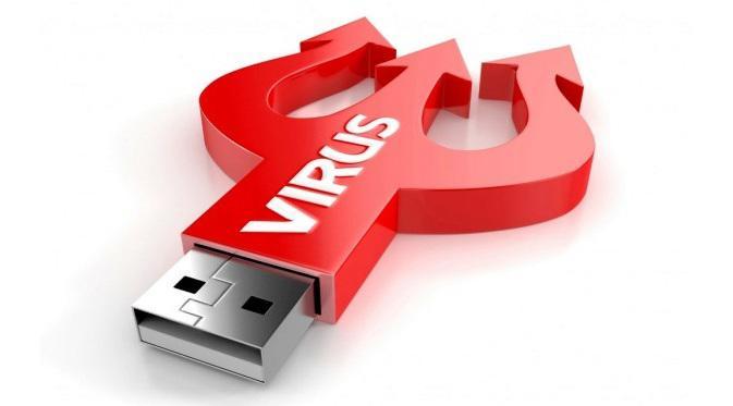 Ilustrasi: Sarang virus Kredit gambar: Humanarticle.info