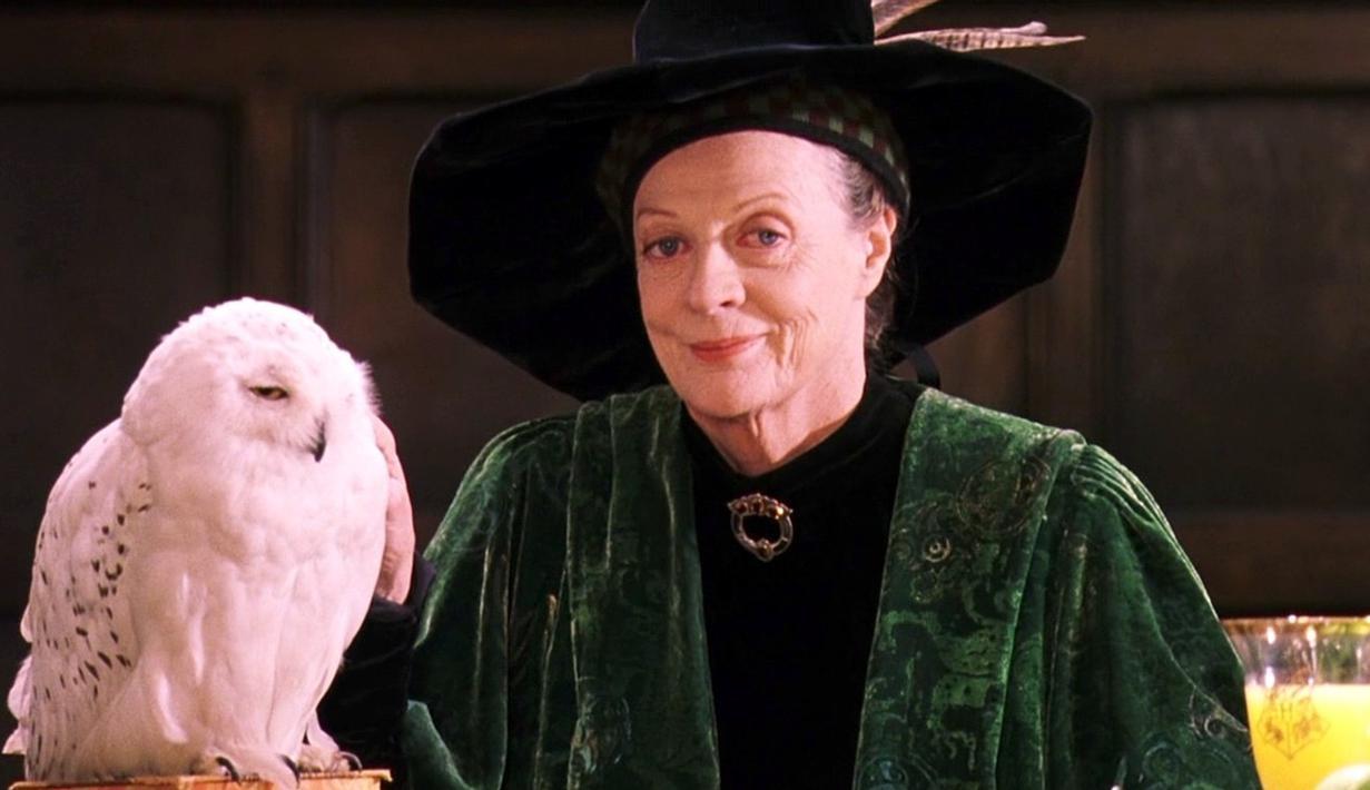 Aktris Harry Potter, Maggie Smith didiagnosa menderita kanker payudara pada tahun 2008. Ia pun harus menjalani kemoterapi. (Hotflick.net)