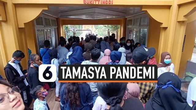 Di tengah pandemi, Pemerintah Kota gratiskan tiket masuk ke area Kebun Binatang Bukittinggi sebagai hadiah hari jadi kota bagi warga. Akibatnya puluhan ribu pengunjung berkerumun tak bisa dibendung.