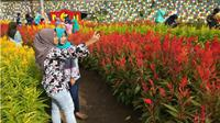 Pengunjung berfoto di Taman Bunga Ragil Kuning di Desa Blagung Simo, Minggu (30/12 - 2018) sore. Taman bunga ini vital di media sosial sejak dibuka 23 Desember lalu. (Solopos/Nadia Lutfiana Mawarni)