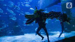 Liong beraksi menghibur pengunjung di Jakarta Aquarium & Safari (JAQS), Jakarta Barat, Jumat (12/2/2021). Pertunjukan Liong Show bawah air yang diikuti oleh para putri duyung tersebut untuk memeriahkan Hari Raya Imlek 2572 atau Tahun Baru China. (Liputan6.com/Faizal Fanani)