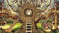 Jayson Fann, seniman asal California berhasil membangun sarang burung yang dapat ditinggali manusia.