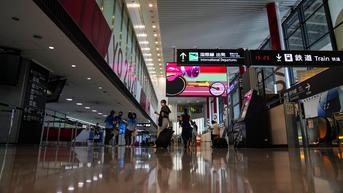 Kura-Kura Menyusup ke Landasan Pacu, Penerbangan di Bandara Narita Tertunda