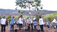 Presiden Jokowi didampingi Ibu Negara Iriana Widodo dan Menteri LHK Siti Nurbaya menanam pohon pada peringatan Hari Menanam Pohon Indonesia dan Bulan Menanam Pohon Nasional di Tahura Sultan Adam, Kalsel, Kamis (26/11). (Satgapres)