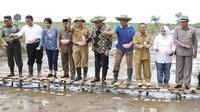 Menteri Pertanian Andi Amran Sulaiman mengunjungi Kalimantan Selatan untuk menggiatkan menggiatkan program Selamatkan Rawa Sejahterakan Petani (SERASI) untuk mendukung korporasi petani.