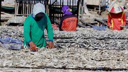 Pekerja menjemur ikan asin di Muara Angke, Penjaringan, Jakarta Utara, Senin (1/8). Proses pengeringan ikan yang hanya membutuhkan waktu dua hari kini bisa menjadi seminggu. (Liputan6.com/Gempur M Surya)