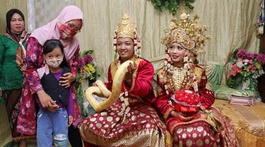 Ular Piton Molurus Jadi Atribut Pernikahan Pengantin di Palembang