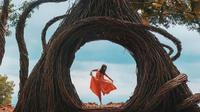 Hutan Pinus Dlingo (folktraveler.id/instagram.com)
