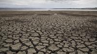 Pemandangan dasar sebuah danau yang kering di Istanbul, Turki, 21 September 2020. Ketinggian air di sembilan bendungan yang memasok kebutuhan Kota Istanbul pada 21 September 2020 merosot menjadi 40 persen, turun dari 52 persen pada periode yang sama tahun lalu. (Xinhua/Osman Orsal)