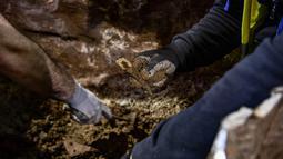 Arkeolog menemukan fosil saat penggalian situs kuno di bawah pusat kota Thessaloniki, Yunani (25/4). Thessaloniki merupakan pusat penting kekaisaran Romawi yang kemudian menjadi kota kedua kekaisaran Bizantium. (AFP/Aris Messinis)