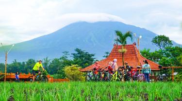 Nendes Kombet Cafe, Restoran Tengah Sawah di Malang yang Tersertifikasi CHSE