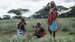 Suku Masaai mempersiapkan diri untuk mengikuti kompetisi Olimpiade Maasai 2018 di Kimana, dekat perbatasan Kenya dengan Tanzania (15/12). Olimpiade Maasai ini untuk menghentikan berburu singa. (AFP Photo/Yasuyoshi Chiba)