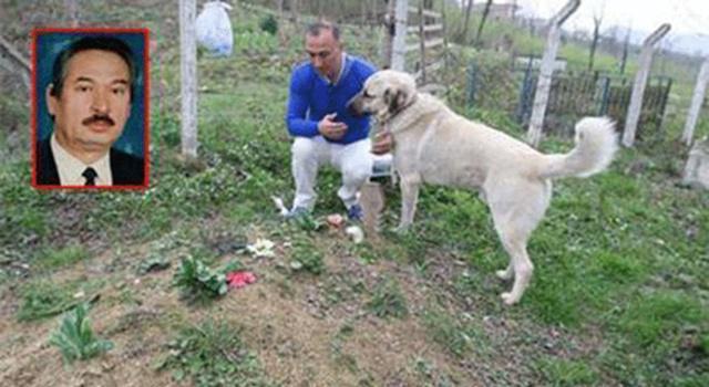 Zozo bersama Zafer saat mengunjungi makam Ismail/copyright viral4real.com
