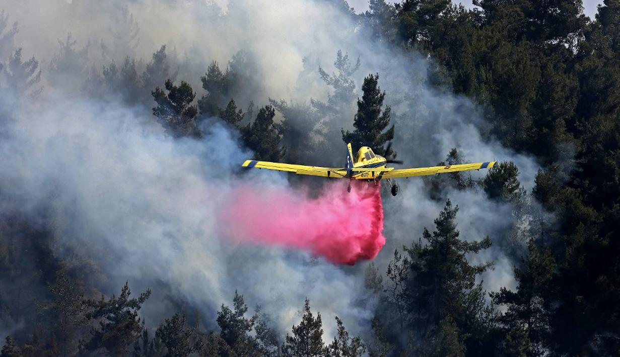 Sebuah pesawat pemadam kebakaran bekerja memadamkan kebakaran hutan yang berkobar di dekat kibbutz Maale Hahamisha di daerah desa Arab-Israel Abu Ghosh dekat Yerusalem, Israel, Rabu (9/6/2021). Kebakaran hebat di pinggiran Yerusalem melumpuhkan lalu lintas. (Menahem KAHANA/AFP)