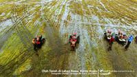 Kementerian Pertanian (Kementan) menegaskan bahwa pupuk bersubsidi hanya untuk petani yang tergabung dengan kelompok tani.
