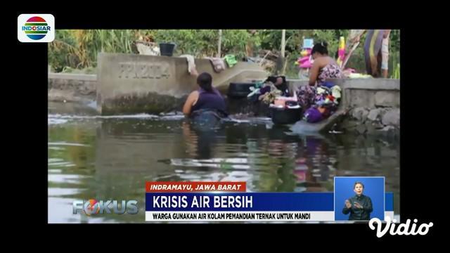 Warga Klaten, Jawa Tengah, harus mencuci baju dan beras menggunakan air bau dan berwarna hijau akibat krisis air bersih.