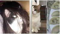 Kelakuan Kucing Ini Gereget Banget Bikin Syok Majikannya (sumber:instagram/