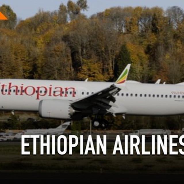 80 Gambar Hewan Ethiopian Gratis Terbaik