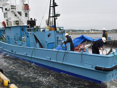 Paus Minke dibawa sebuah kapal di pelabuhan Kushiro, Prefektur Hokkaido, Jepang (1/7/2019). Jepang memulai kembali perburuan paus komersil pertama kalinya dalam 33 tahun, setelah menarik diri dari Komisi Penangkapan Paus Internasional (IWC). (AFP Photo/Kazuhiro Nogi)