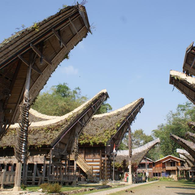7 Tempat Wisata Di Toraja Dengan Keunikan Budaya Dan Keindahan Alam Hot Liputan6 Com