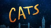 Saksikan Official Trailer 2 Cats. sumberfoto: Universal Pictures Indonesia