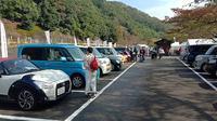 Peserta Love-Local merupakan konsumen loyal Daihatsu. Kebanyakan dari mereka menggunakan kei car. (ist)