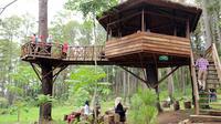 Rumah Pohon Bekasi / Sumber: Wisatasia.com