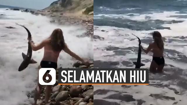 Beredar video aksi wanita selamatkan hiu kecil yang terdampar di pantai. Kemudian wanita itu melepaskannya kembali ke arah laut.