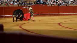 Matador asal Spanyol, Jose Maria Manzanares saat bertarung dengan banteng di arena adu banteng Real Maestranza di Sevilla, Spanyol (21/4). (AFP Photo/Cristina Quicler)