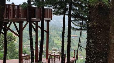 Damar Langit, Destinasi Wisata Baru di Puncak Bogor Berpanorama Pegunungan