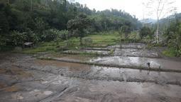 Pemandangan lahar dingin disertai lumpur pekat menutupi sawah di sekitar Sungai Yeh Sah di desa Rendang, Karangasem, Bali, Rabu (6/12). Lahar dingin tersebut keluar dari sepanjang hulu Gunung Agung. (Liputan6.com/Immanuel Antonius)