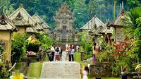 Bila Anda berkunjung ke Bali, jangan lupa singgahi tiga desa wisata berikut ini yang pasti membuat Anda kagum.