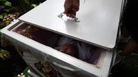 """Seorang siswa remaja berbaring di dalam peti mati di Kid Mai Death Awareness Cafe, Thailand (30/3). Selain itu cafe ini juga menyediakan menu yang cukup aneh seperti minuman rasa """"kematian"""" dan """"menyakitkan"""". (AFP/Lillian Suwanrumpha)"""